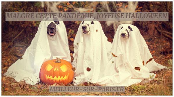 Joyeuse halloween 31 octobre 2020